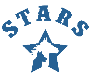 Special Troopers Adaptive Riding School (STARS) Card Image